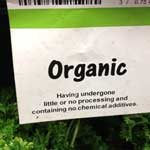 "Organic Farming: ""Natural"" not Always Best"