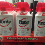 Glyphosate Safety Report Disappears